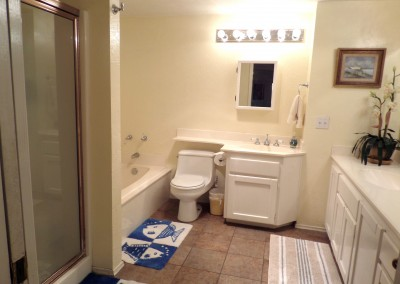1211 master bathroom interior